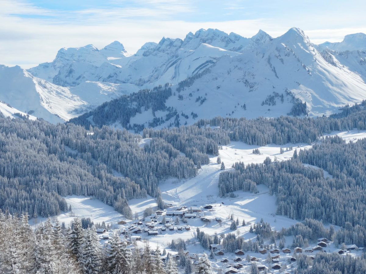 Les Gets Ski Resort (4)